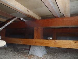 ヨコハマ防蟻のシロアリ対策工事